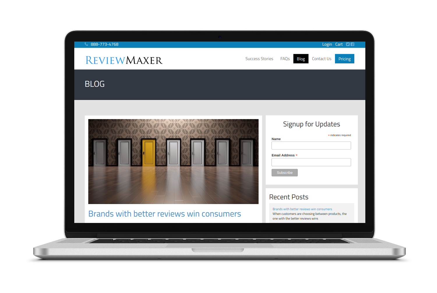 Reviewmaxer Blogging